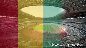 Entscheidung zurückgenommen: Team aus Guinea reist doch zu Olympia nach Japan - Sportbuzzer