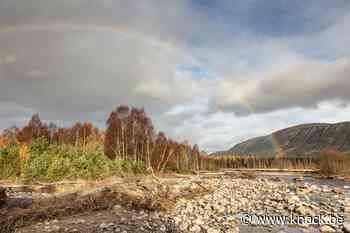 Rewilding: over 200 jaar heeft Schotland zijn bossen terug