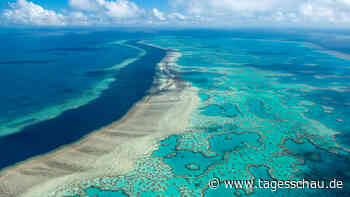 "Australien: Great-Barrier-Riff kein ""gefährdetes"" Welterbe"