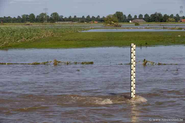 Burgemeester Maaseik schat dat 80 hectare oogsten in Maasgebied verloren zijn