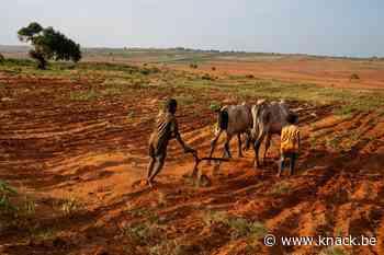Aanhoudende droogte stort Madagaskar in hongercrisis