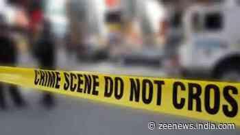 Businessman, his friend murdered in Delhi`s Ashok Vihar, three including relative arrested