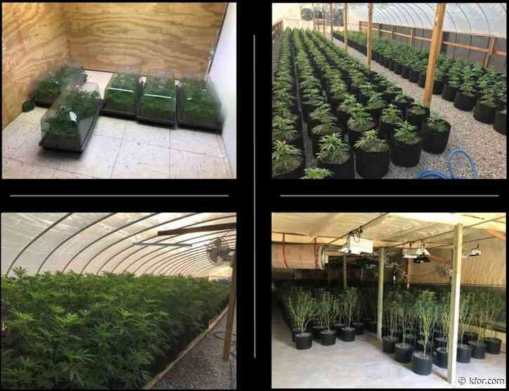 Two arrested as illegal marijuana growing operation shut down in Oklahoma