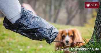 Hundekot sorgt in Warthausen für Ärger - Diese Strafen drohen den Haltern - Schwäbische