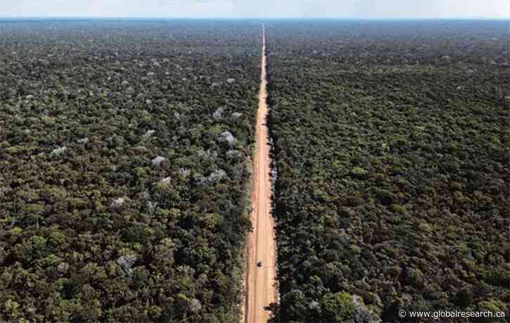 Planned Brazil-Peru Highway Threatens One Of Earth's Most Biodiverse Places