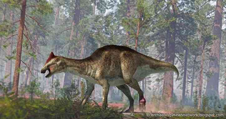 A foot tumor and two tail fractures complicated the life of this hadrosaur