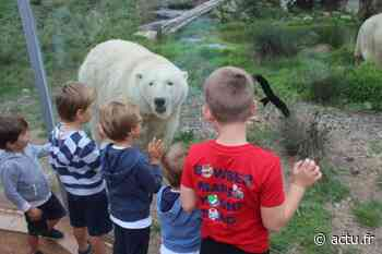 Près de Lisieux, le zoo Le Cerza espérait un report du pass sanitaire - Le Pays d'Auge