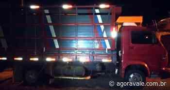 Caminhão com gados de procedência duvidosa é apreendido em Lorena - AgoraVale