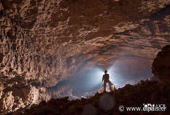 Las cuevas de Costa Rica: Un viaje a las entrañas de la Tierra - Diario Digital Nuestro País