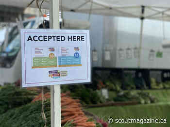 Vancouver Farmers Market Coupons Helping Local Farms and Families - Scout Magazine