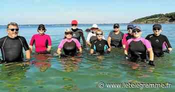 La plage en été à Concarneau : ces infatigables marcheurs aquatiques - Le Télégramme