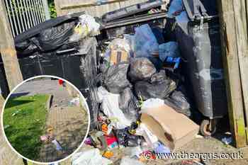 Bin collection delays in Brighton due to 'pingdemic'