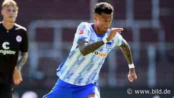 Hertha BSC: Darum packt Hertha Davie Selke in Watte - BILD