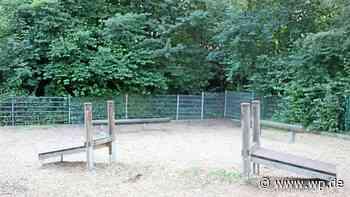 Unbekannte stehlen Holzbrücke von Schulspielplatz in Hagen - WP News