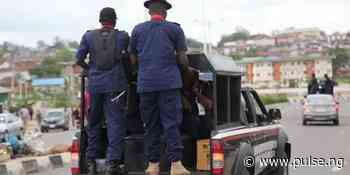 NSCDC arrests 6 suspected cultists, recovers arms in Cross River - Pulse Nigeria