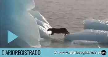 Cristina tuiteó un video de El Calafate y en las redes lo tomaron como adelanto de las listas - Diario Registrado