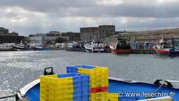 Le port de Lorient renforce sa production de glace - Les Échos