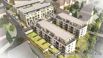Bürgerversammlung Bad Liebenzell - Viele Projekte laufen gleichzeitig - Schwarzwälder Bote