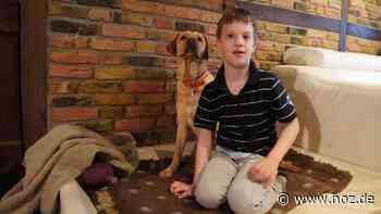 So soll ein Assistenzhund elfjährigem Paul aus Geeste im Alltag helfen - NOZ