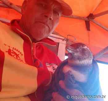 Pinguim é resgatado por guarda-vidas em praia de Araruama - Clique Diário