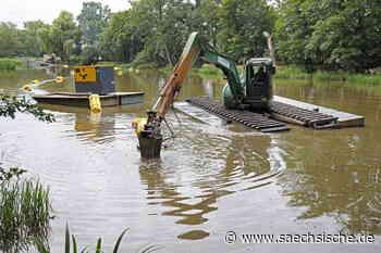Riesa: Regen macht Teichsanierung viel teurer - Sächsische.de