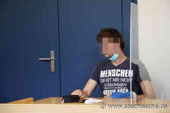 Riesa: DNA-Spur nach Laubeneinbruch umstritten - Sächsische.de
