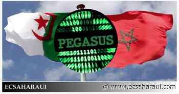 El Majzén golpea a Argelia dos veces en cuatro días. - www.ecsaharaui.com
