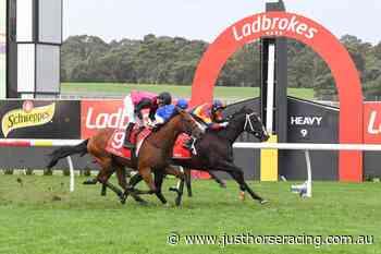 Mildura Cup Field – 2021 - Just Horse Racing