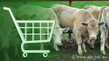A lot of us have turned to shopping online during the pandemic, it seems farmers did the same