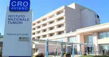 Al Cro di Aviano 3,3 milioni, è record assoluto di donazioni - Il Friuli