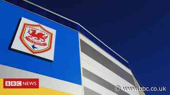 Racism probe as 'bananas thrown at Cardiff City academy players'