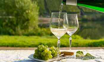 Glass of white wine a day can delay the menopause, study shows