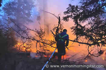 Vernon ranch helping wildfire evacuees and animals – Vernon Morning Star - Vernon Morning Star
