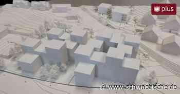 Friedrichshafen: Kosten für Neubau Landratsamt stehen fest - Schwäbische