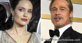 Jolie-Pitt divorce judge disqualified by appeals court - Weyburn Review