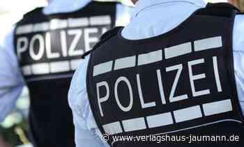 Grenzach-Wyhlen : Hund kommt Motorroller in die Quere - Grenzach-Wyhlen - www.verlagshaus-jaumann.de