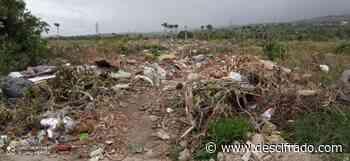 Jóvenes de Tucupita buscan sobrevivir en vertederos de basura - Descifrado.com