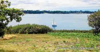 Vannes - Golfe du Morbihan : l'hiver lui va si bien - Le Télégramme