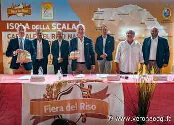 Isola della Scala, la Fiera del riso si arrende: rinviata all'anno prossimo - veronaoggi.it