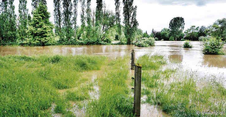 Hochwasserschutz in Mannheim:  Der Pegelstand ist nicht der einzige Faktor