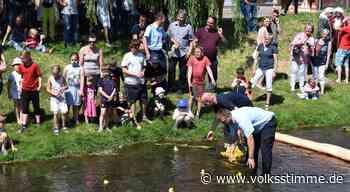 In Weferlingen gibt es zum Denkmaltag ein Entenrennen - Volksstimme