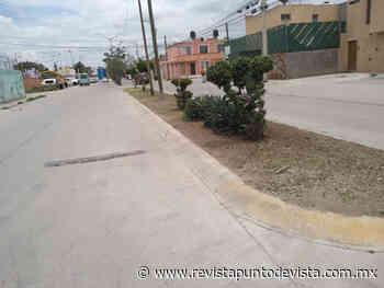 Cuadrillas de servicios municipales de Soledad recorren distintos sectores - Revista Punto de Vista - RPDV