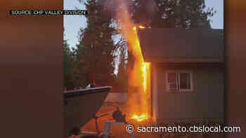 CHP Officer Rescues 5 Kittens From Burning Home