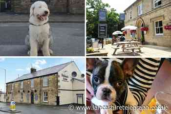 10 dog-friendly pubs you can visit in East Lancashire
