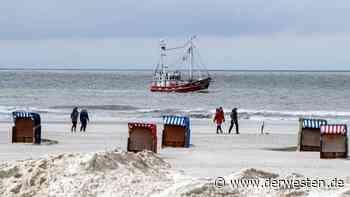 Urlaub an der Nordsee: Schäferin will zu ihren Tieren gehen – und erlebt dann DAS - Der Westen