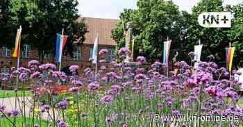 Blütenpracht am Roland erhöht Attraktivität von Bad Bramstedt - Kieler Nachrichten