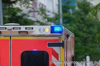 Verkehrsunfall in Wendlingen - In die Böschung geschleudert und verletzt - esslinger-zeitung.de