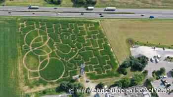Maislabyrinth in Seligweiler eröffnet: Eine Ente ist das Motiv - Augsburger Allgemeine