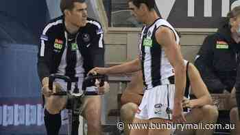 Pendlebury out for AFL season with injury - Bunbury Mail