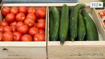 Einzelhandel in Plau am See: Rewe baut Markt mit großem Sortiment im Gewerbegebiet | svz.de - svz.de